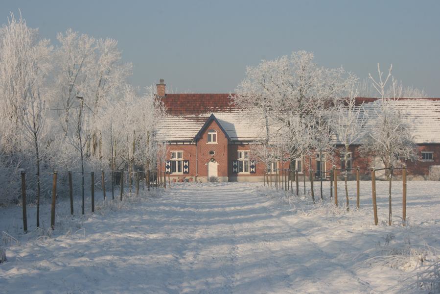 Domus-Silva-Koningshooikt-Lier-Winter-01