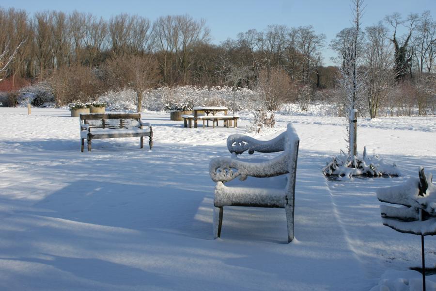 Domus-Silva-Koningshooikt-Lier-Winter-02