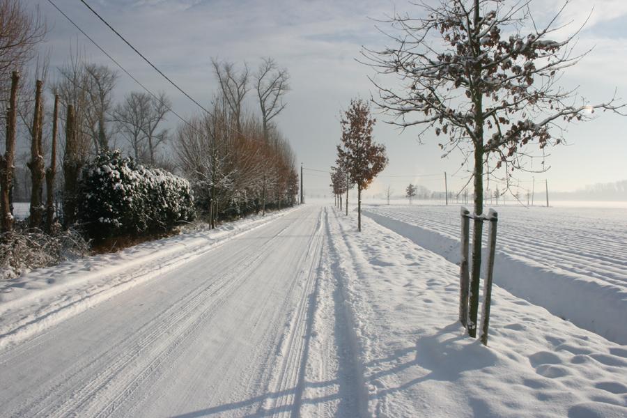 Domus-Silva-Koningshooikt-Lier-Winter-04