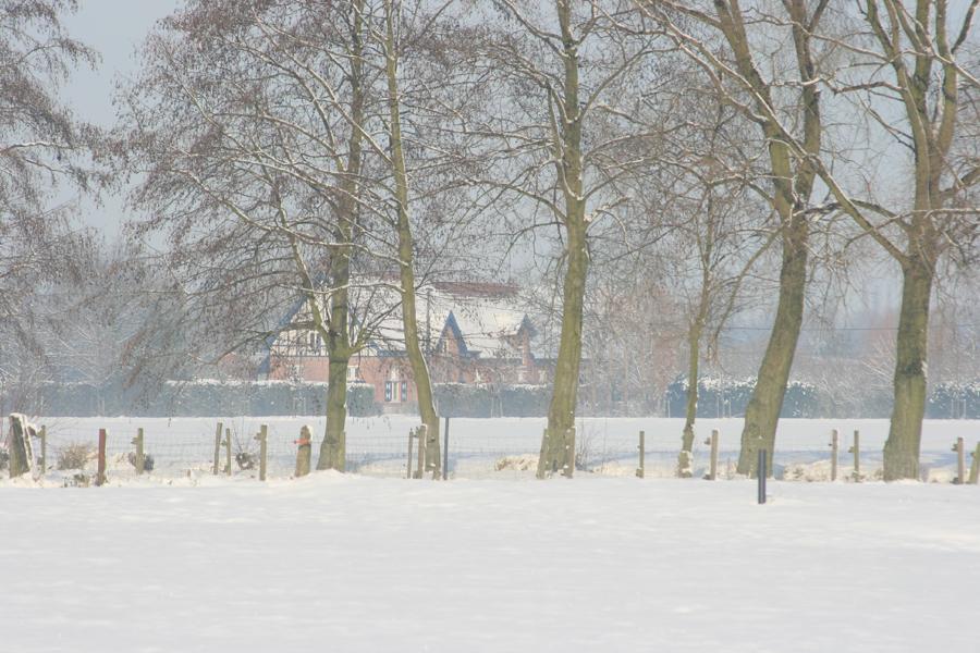 Domus-Silva-Koningshooikt-Lier-Winter-05