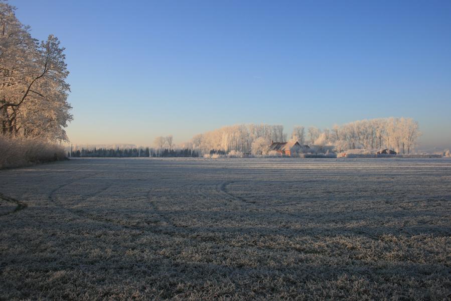Domus-Silva-Koningshooikt-Lier-Winter-08