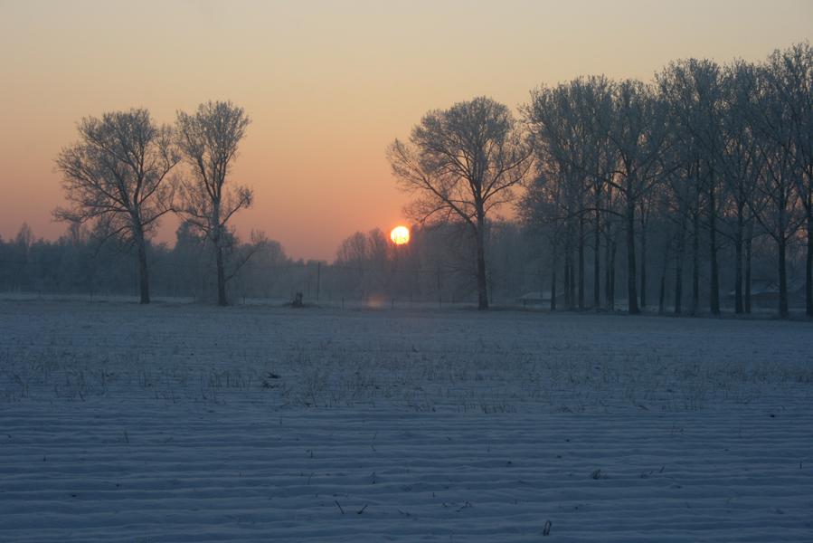 Domus-Silva-Koningshooikt-Lier-Winter-09